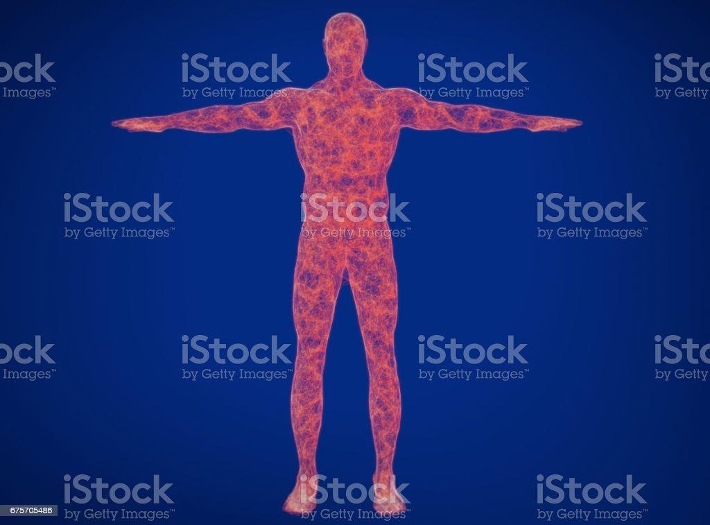 神經連接概念。人體神經內科,中樞神經系統。3D 圖 免版稅 stock photo