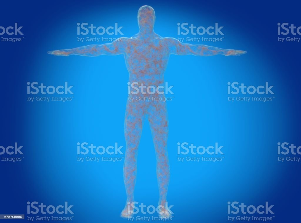 Neural connections concept. Human body neurology, nervous system. 3D illustration stock photo