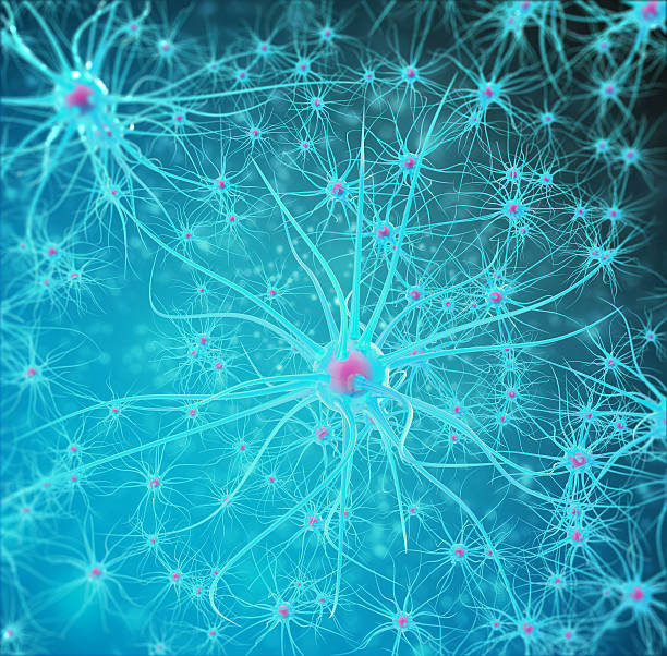 Neural network, brain cells, nervous system. 3d illustration stock photo