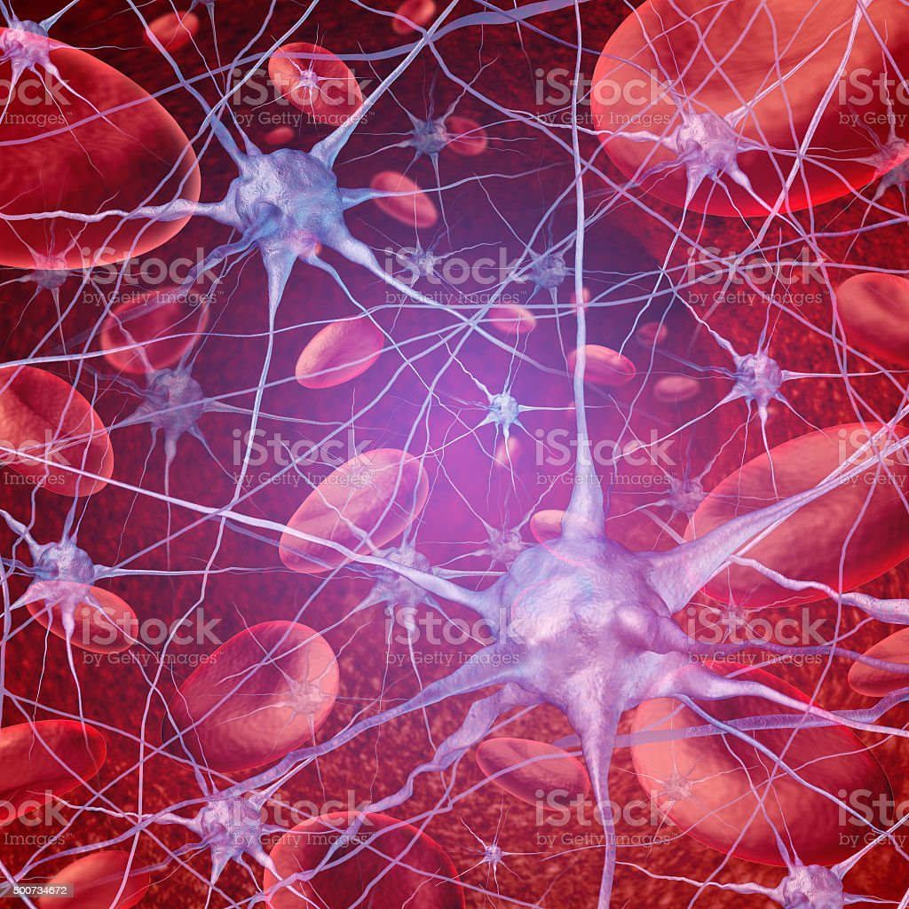 Neuron Blood Circulation stock photo