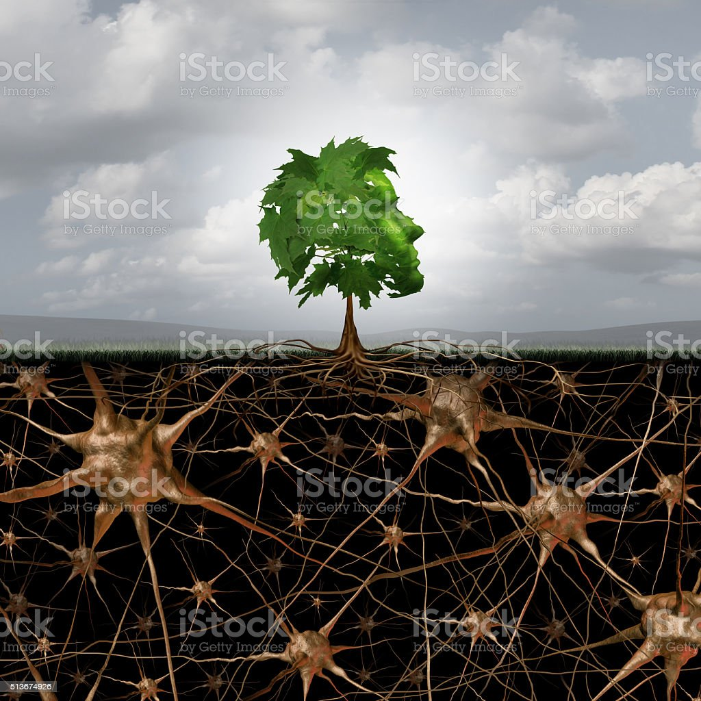 Neuron Brain Connection stock photo