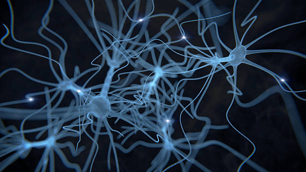 neuron cell network on black - nerve cell stock photos and pictures
