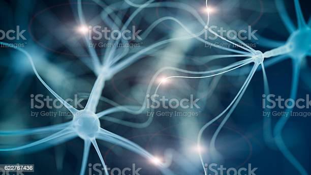 Neuron cell network picture id622767436?b=1&k=6&m=622767436&s=612x612&h=fyqe q4dkhzsvyoniuinfmsn iqznhcvylrdks2uxks=