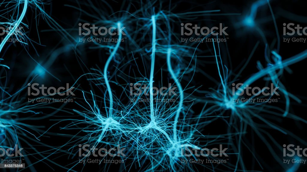 Neuron cell network stock photo