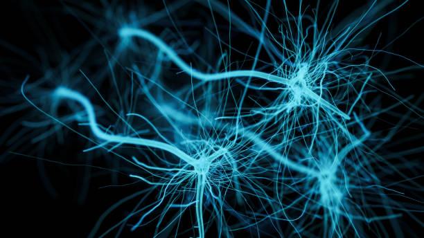 - neuron zelle netzwerk - synapse stock-fotos und bilder