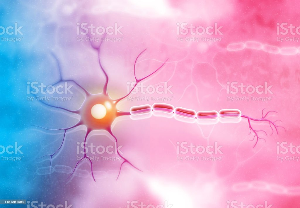 Neuron cell on medical background Neuron cell on medical background. 3d illustration Alzheimer's Disease Stock Photo