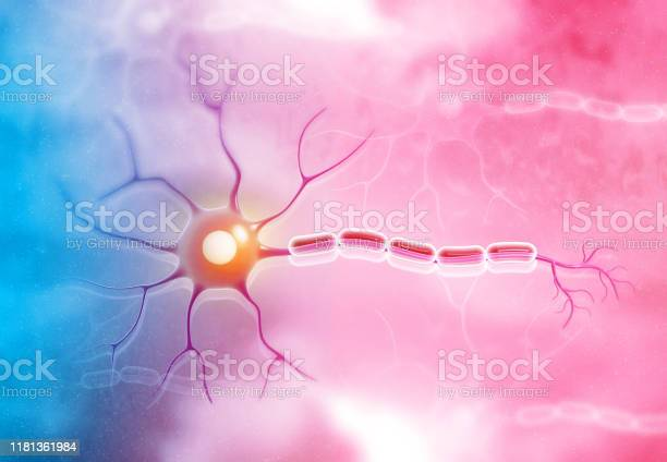 Neuron Cell On Medical Background Stock Photo - Download Image Now