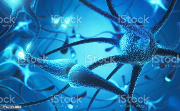 Neuron Cell Stock Photo - Download Image Now