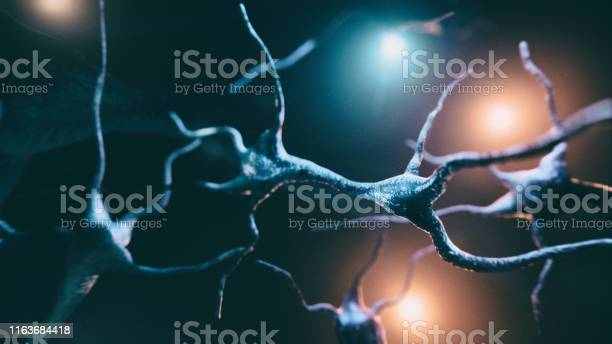 Neuron Cells System Stock Photo - Download Image Now