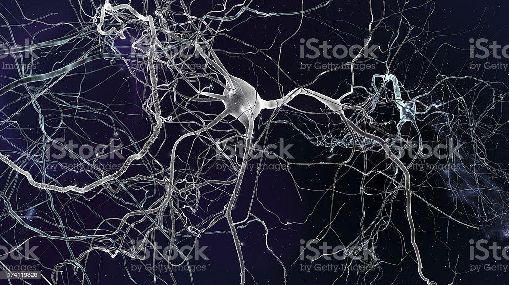 neuron concept royalty-free stock photo