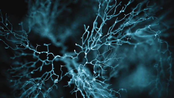 Neuron system Neuron cells system - 3d rendered image of Neuron cell network on black background. Hologram view  interconnected neurons cells with electrical pulses. Conceptual medical image.  Glowing synapse.  Healthcare concept. synapse stock pictures, royalty-free photos & images