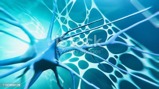 istock Neuron system 1152856129