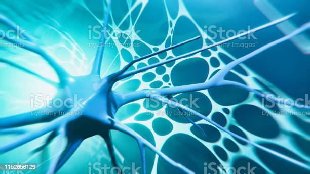Neuron System Stock Photo - Download Image Now