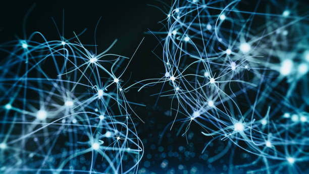 Neuron system Neuron cells system - 3d rendered image of Neuron cell network on black background. Hologram view  interconnected neurons cells with electrical pulses. Conceptual medical image.  Glowing synapse.  Healthcare concept. axon terminal stock pictures, royalty-free photos & images