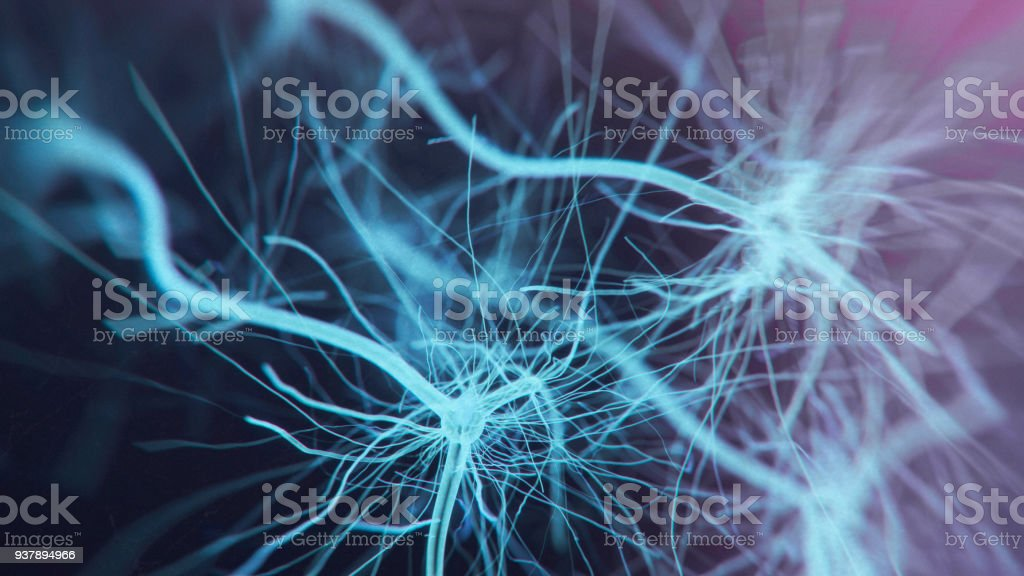 Neuron system royalty-free stock photo
