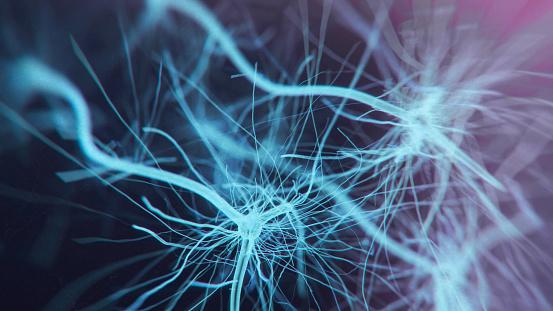 istock Neuron system 937894966