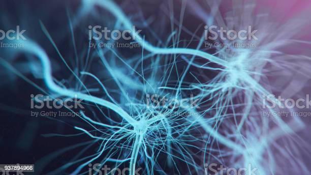 Neuron system picture id937894966?b=1&k=6&m=937894966&s=612x612&h=mm7u3apricclz242rnouudlsf udwug8twecisemack=