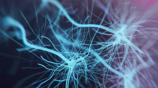 Neuron system Neuron cells system - 3d rendered image of Neuron cell network on black background. Hologram view  interconnected neurons cells with electrical pulses. Conceptual medical image.  Glowing synapse.  Healthcare concept. als stock pictures, royalty-free photos & images