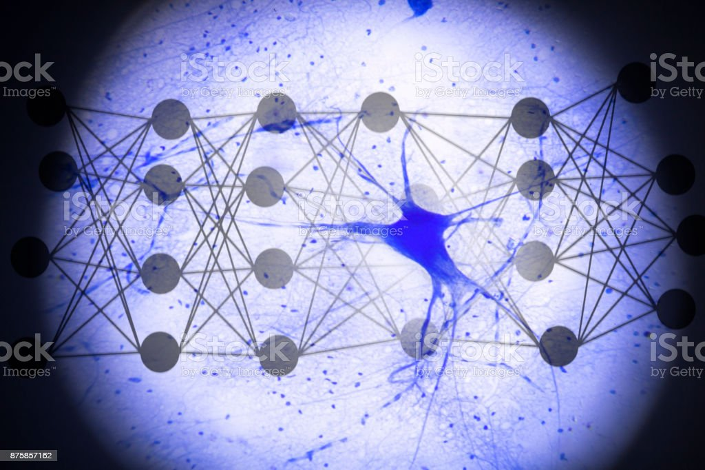 neuron with circuit dots stock photo
