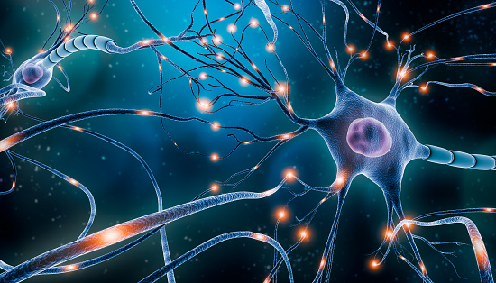 Neuronal network with electrical activity of neuron cells 3D rendering illustration. Neuroscience, neurology, nervous system and impulse, brain activity, microbiology concepts. Artist vision.