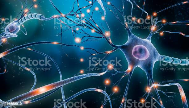 Neuronal Network With Electrical Activity Of Neuron Cells 3d Rendering Illustration Neuroscience Neurology Nervous System And Impulse Brain Activity Microbiology Concepts Artist Vision Stock Photo - Download Image Now