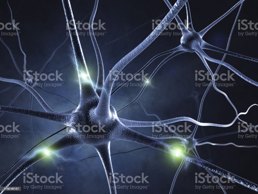 Neurons and neural system stock photo