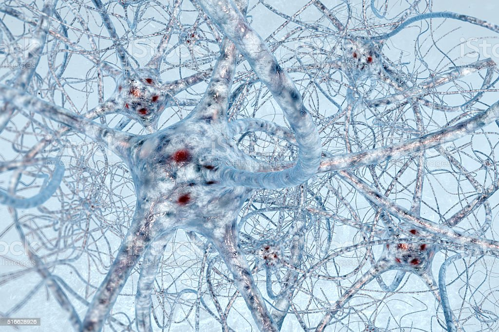 Neurons cell brain on science background stock photo