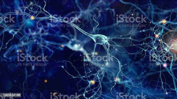 Neurons cells concept picture id1053434168?b=1&k=6&m=1053434168&s=612x612&h=e v08cxojyzp4o khkh3fzeiiyy8eozeajswzzidhkc=