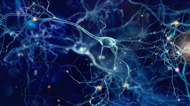 Neurons cells concept Conceptual illustration of neuron cells with glowing link knots in abstract dark space, high resolution 3D illustration biological cell stock pictures, royalty-free photos & images