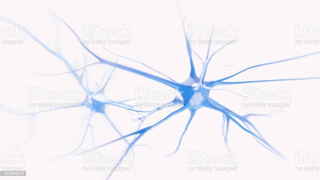 SEM  neurons cells stock photo