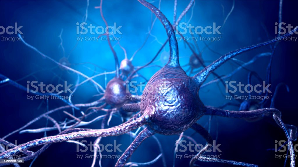neurons connections stock photo