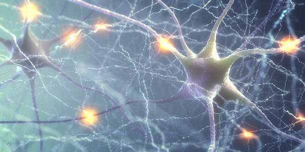 Neurons Electric Pulse - foto stock