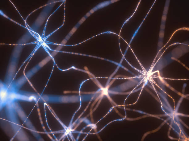 Neurons Electrical Pulses - foto stock