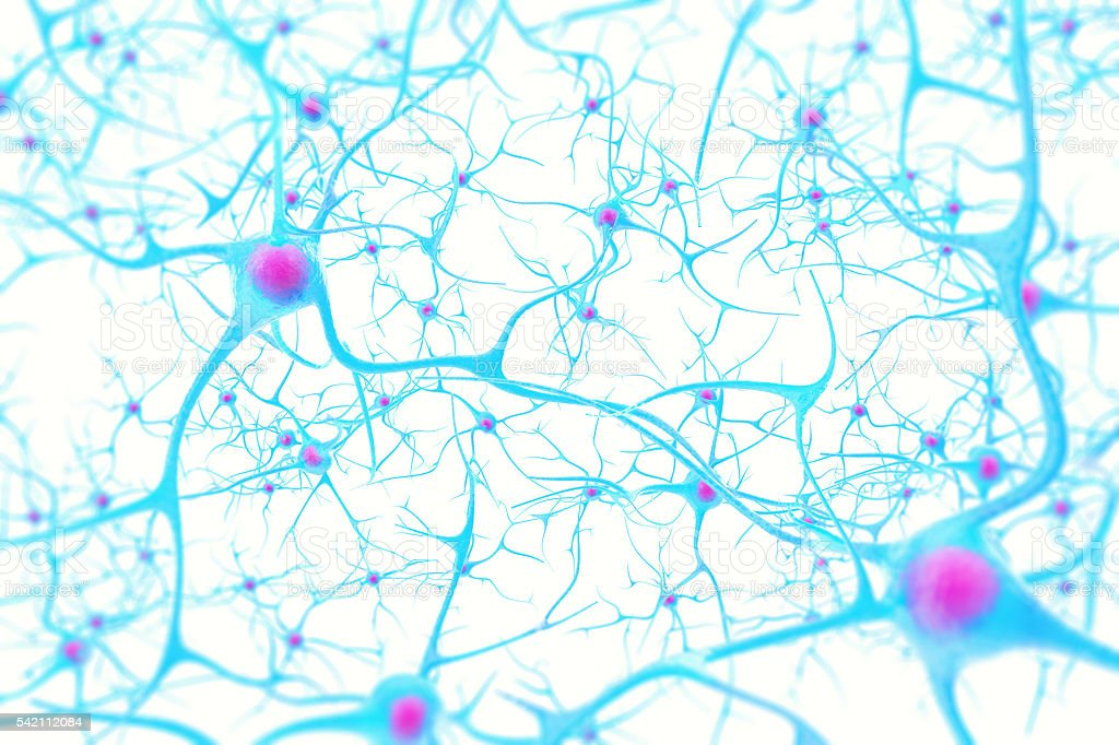 Neurons In The Brain On White Background With Focus Effect Stock ...