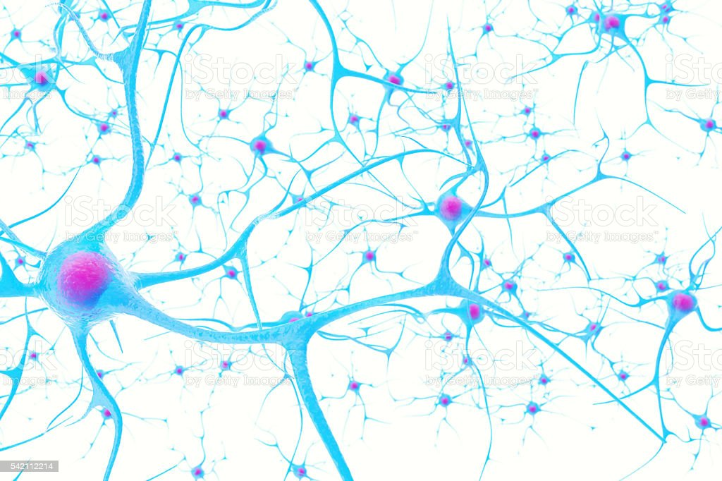 Neurons in the brain on white background with focus effect stock photo