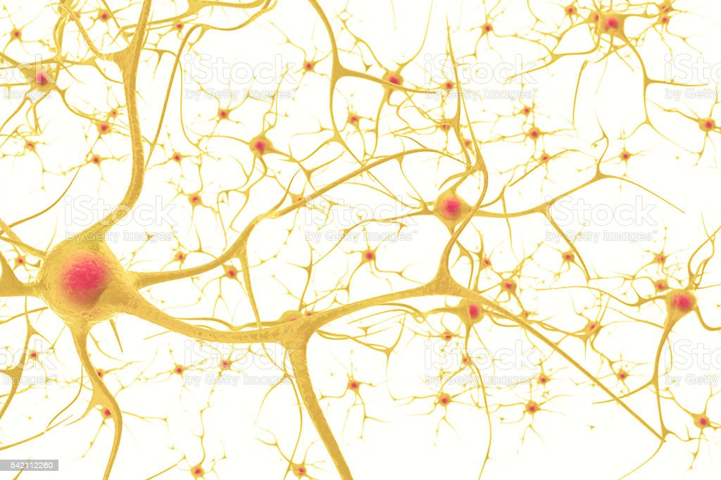Neurons in the human nervous system with the effect of stock photo