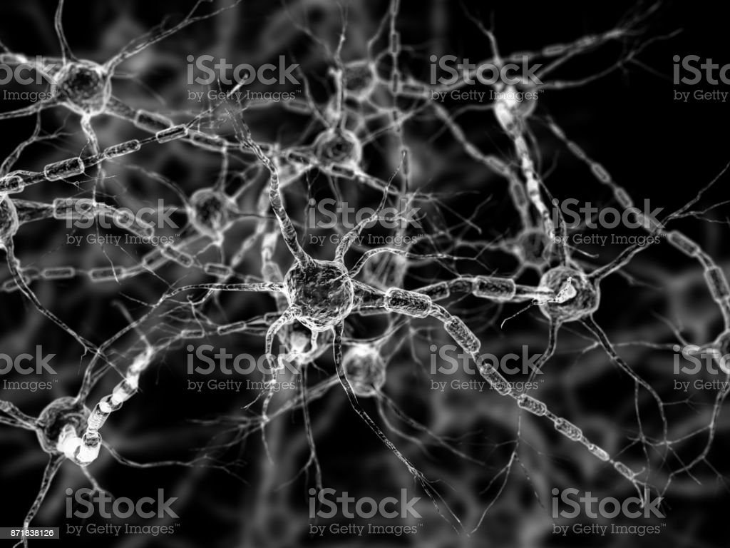 Neurons - Neural networks - brain cells stock photo