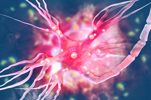 istock Neurons on scientific background 1016540630