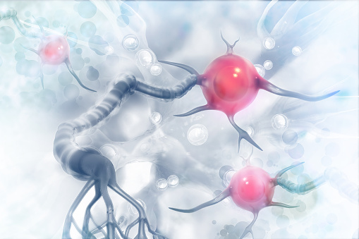 istock Neurons on scientific background 1016558882