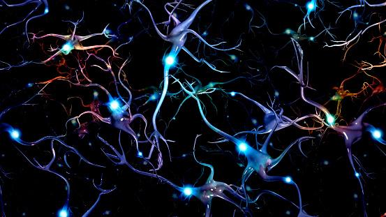 istock Neurons 1060592314