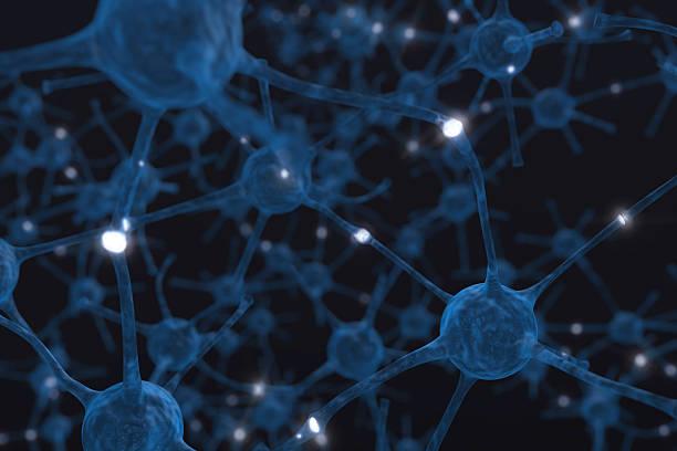 Neurons – Foto