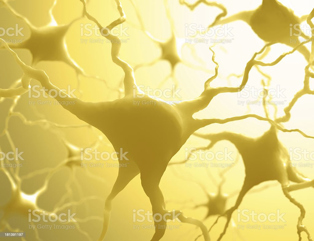 Neurones royalty-free stock photo