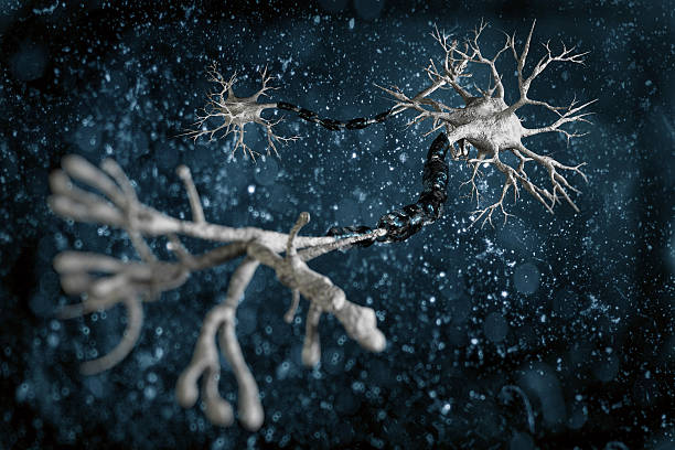 Neuronas - foto de stock