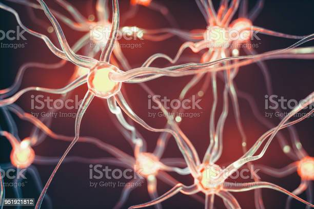 Neurons picture id951921812?b=1&k=6&m=951921812&s=612x612&h=drmksu5nzzzhcsp88duym0tn9fw1zrxikgs plo4zne=