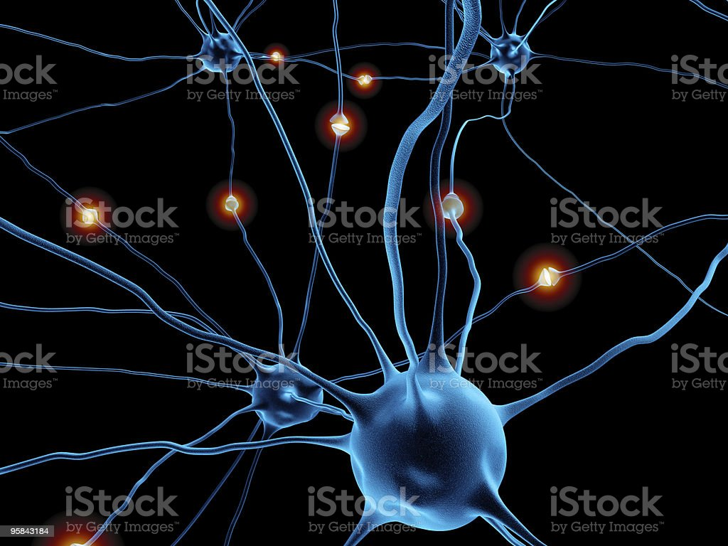 Neurons stock photo