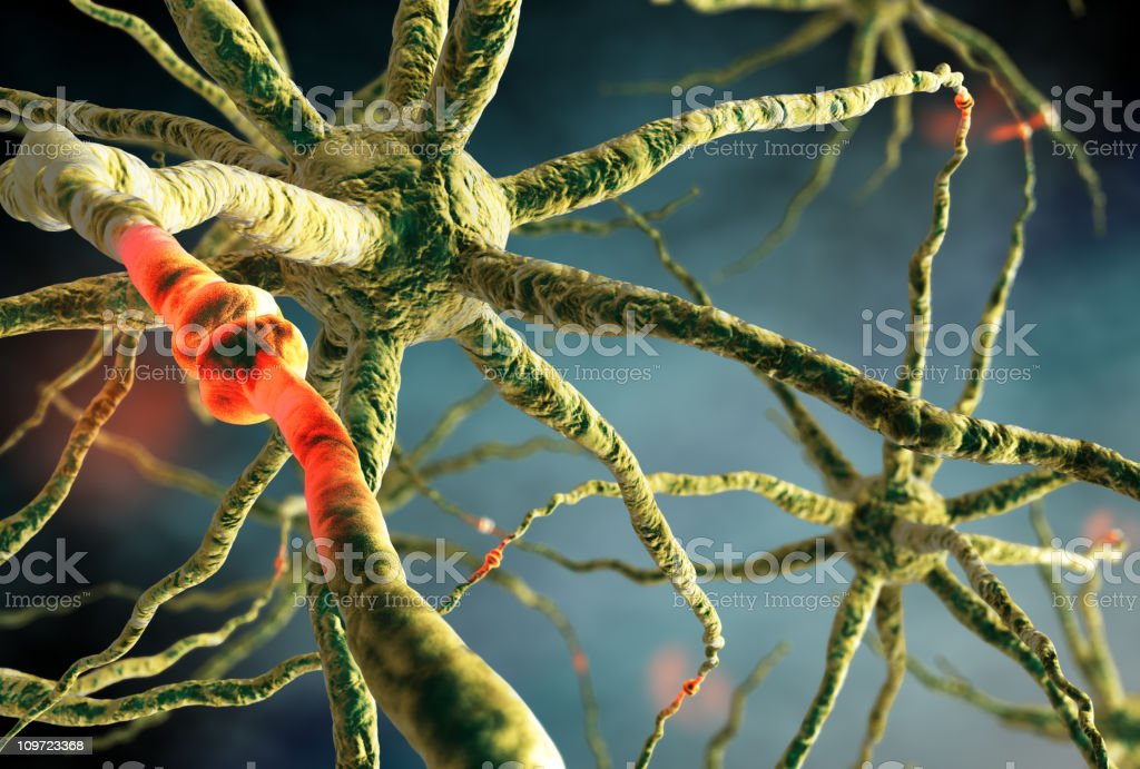 Neurons transmitting cellular signals stock photo