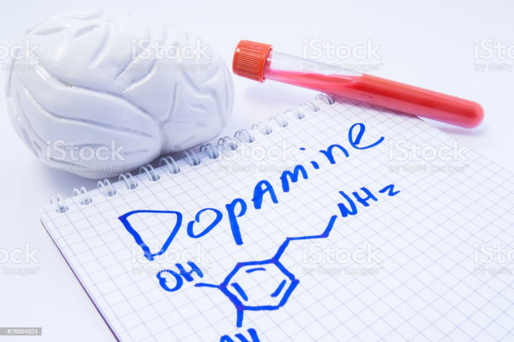 Neurotransmitter Dopamine in brain. Anatomic 3D brain model, lab test tube with blood and note, where is written title of dopamine and formula. Concept for determine level of dopamine in human brain stock photo