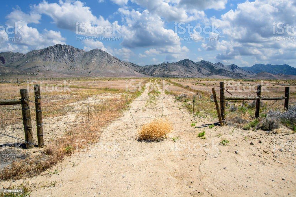 Nevada ranch road stock photo