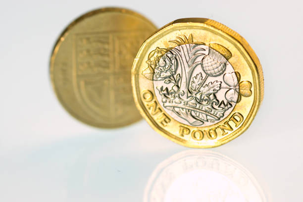 New and old pound coins Close up of the new UK pound coin released into circulation 30 Mar 2017 and the old pound coin which goes out of circulation 16 Oct 2017. This is shows the tail of both coins. one pound coin stock pictures, royalty-free photos & images