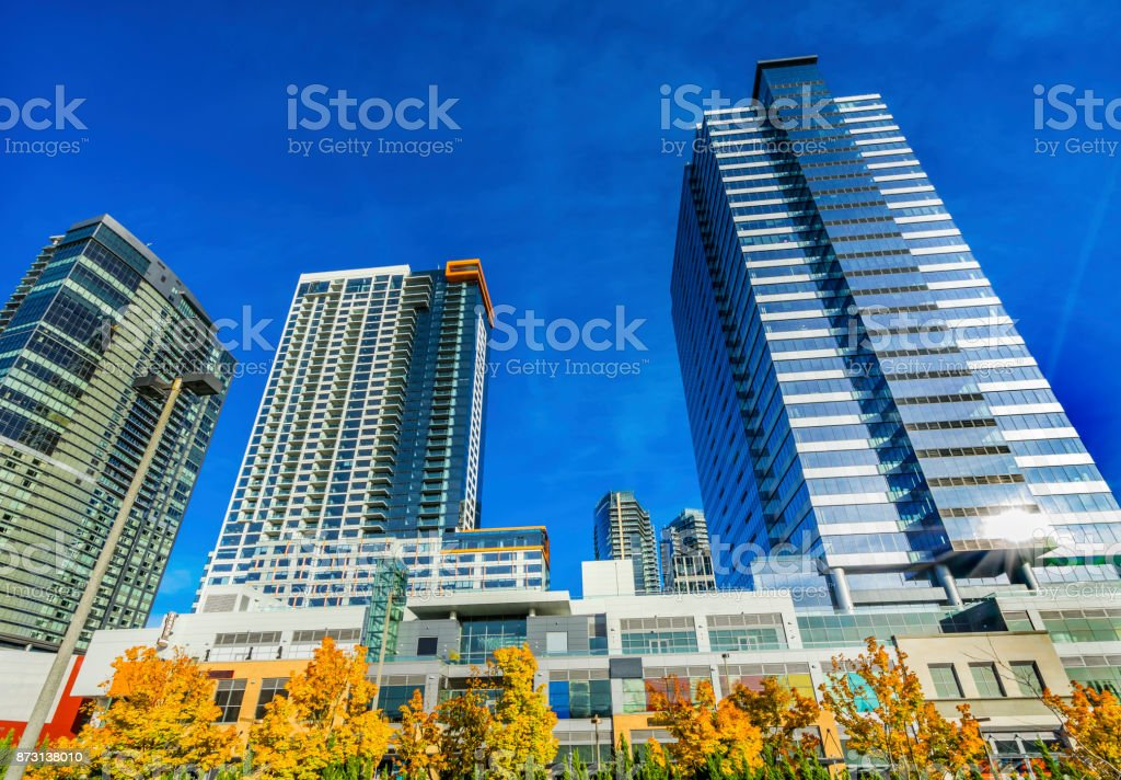 New Bellevue Washington Tall Buildings Autumn Leaves stock photo